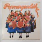 Popmenyecskék és a Z'Zi Labor LP (NM/EX)
